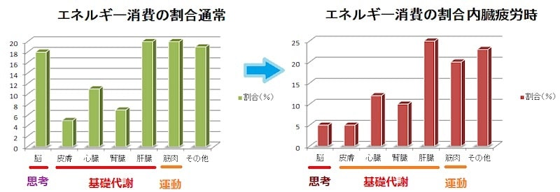 エネルギー消費の割合変化
