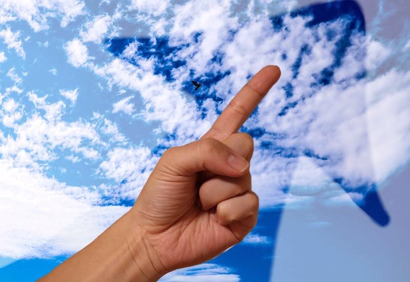 自信・空を指す指