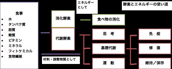 エネルギーの使い道3